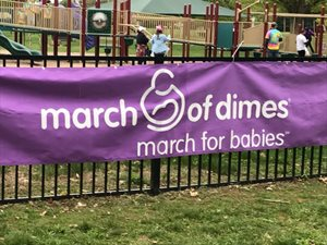 March-for-Babies-Springfield-MA